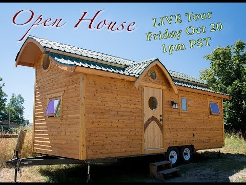 Damselfly LIVE Tour - Open House