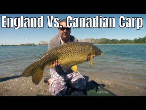 England Vs. Canadian Carp | Fish'n Canada