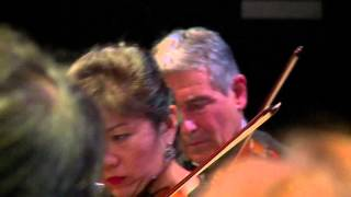 Josef SUK - Sérénade pour cordes Opus 6