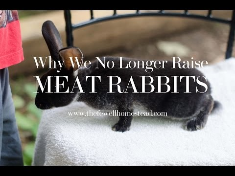 How to raise rabbits for meat pdf