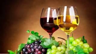 Fransa Sağlık Bakanı Şarap Zararlı Dedi Fransa Cumhurbaşkanını Kızdırdı