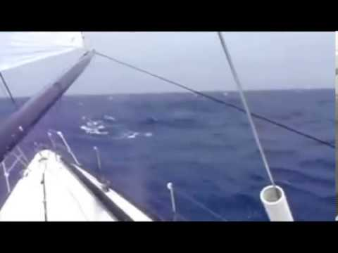 Extreme Sailing and offshore sailboat racing while you earn money online...