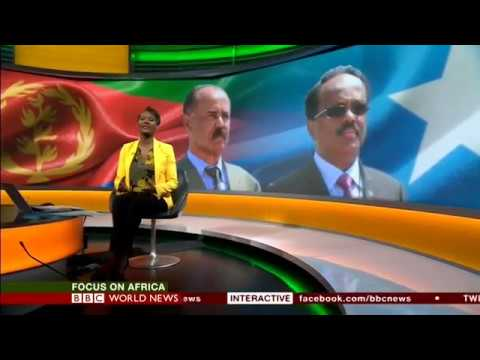 BBC World News - Focus on Africa interview with Amb. Andebrhan Welde Giorgis