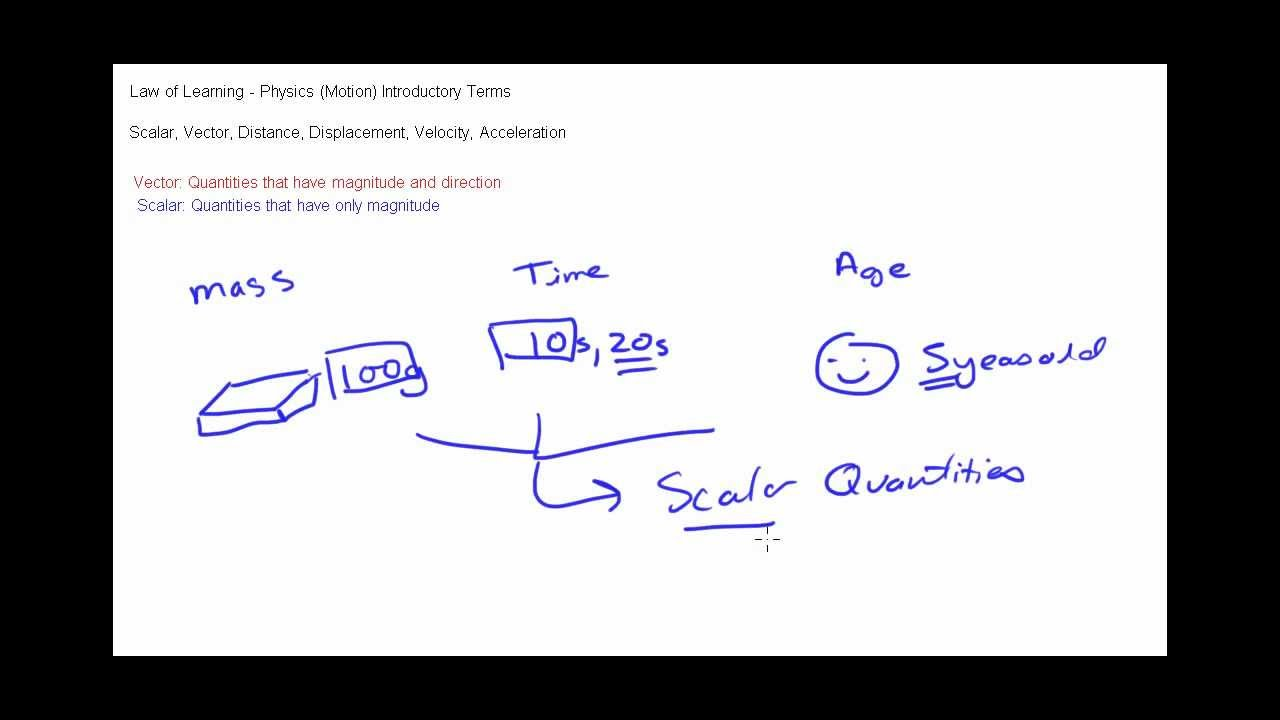 Difference Between Scalar and Vector Quantities - YouTube