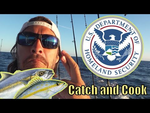 TROLLING For Yellowtail THEN Called By HOMELAND SECURITY {Catch And Cook}