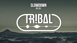 Twinztrack - Slowdown