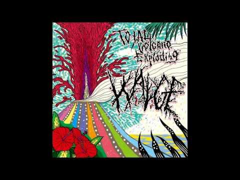 Wadge - Total Volcano Exploding FULL ALBUM (2012 - Grindcore / Surf / Powerviolence)