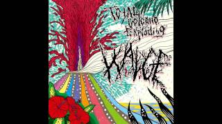 Wadge ‎- Total Volcano Exploding FULL ALBUM (2012 - Grindcore / Surf / Powerviolence)