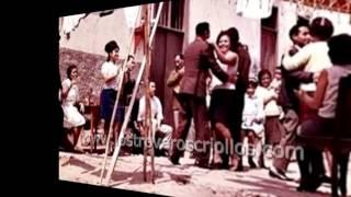 Jarana Peruana - Fiesta Criolla y sus Amigos