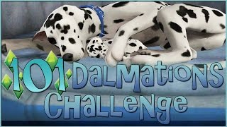 Sims 3 || 101 Dalmatians Challenge: Practically Perfect Puppies - Episode #18