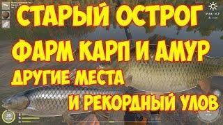 фарм КАРП И АМУР НА оз. СТАРЫЙ ОСТРОГ ГАЙД русская рыбалка 4 другие места и рекордный улов