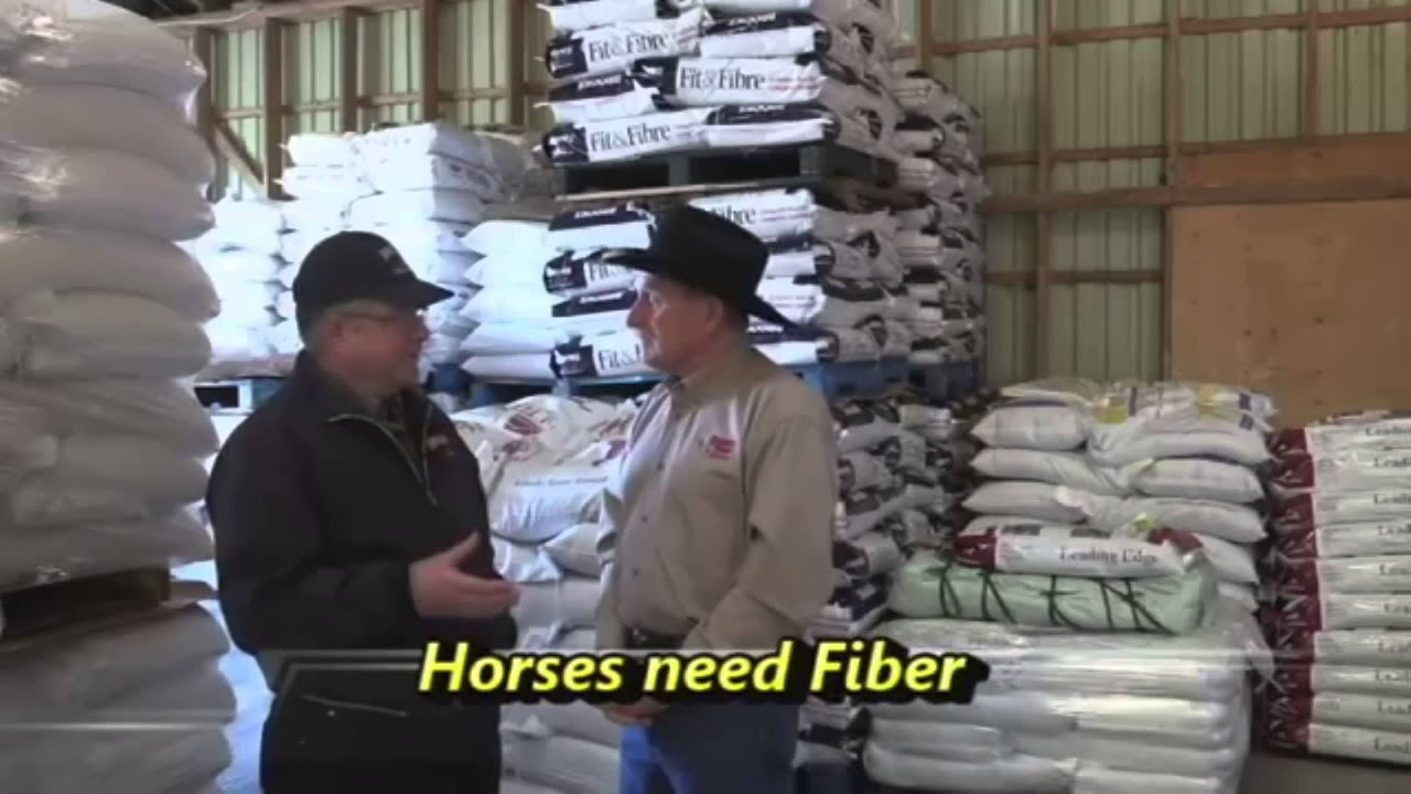 Horse Feed and Nutritional Supplements - Brooks Feeds