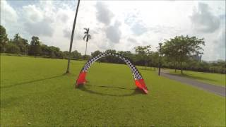 ryu testing zmx fusion x25 2206 2300kv outdoor 9th sept 2016