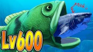 巨大サメまる飲み Lv600!! まる飲みくんのMaxレベルでメガロドン飲みまくり!! サメの海で弱肉強食の壮絶バトル!! - Feed and Grow Fish #34