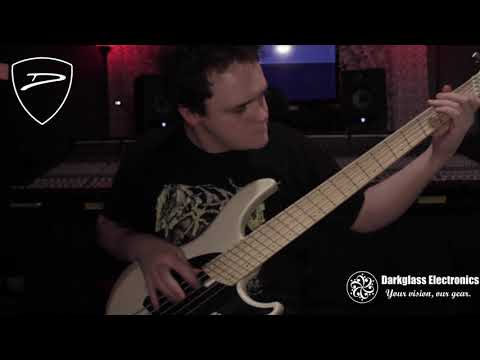 Gojira - Silvera (Bass Cover By Mike Cassese) | Darkglass X7 X Dingwall NG2 Demo