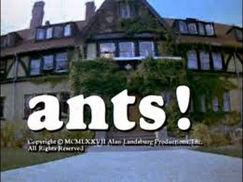 "▶ Misty Brew- ""Ants! (aka: It Happened at Lakewood Manor)"" (1977) - (The 8:00 Movie)+"