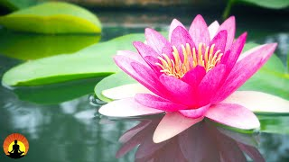 Relaxing Music, Spa Music, Meditation, Healing, Sleep Music, Yoga Music, Stress Relief Music, ☯3688