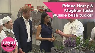 Prince Harry and Meghan get a taste for Australian native bush food