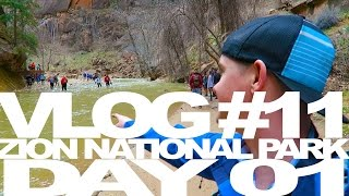 Road Trips and Camping Hangovers - Zion National Park with November Project LAX