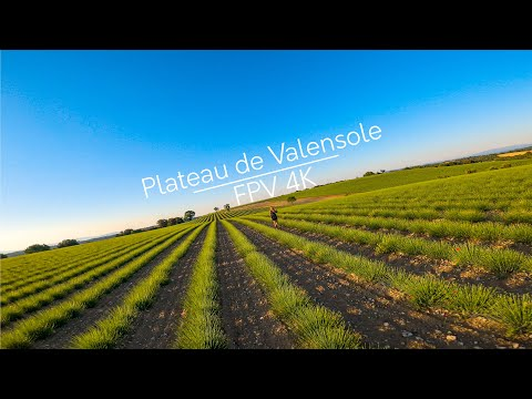 Фото Cinematic FPV - Plateau de Valensole 4K