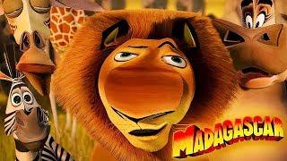 Мадагаскар добрая концовка
