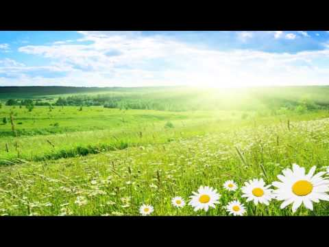 Vivaldi Summer (Full HD) Classical music