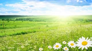 vivaldi-summer-full-classical-music