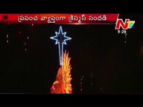Brazil Lights Up World's Biggest Christmas Tree