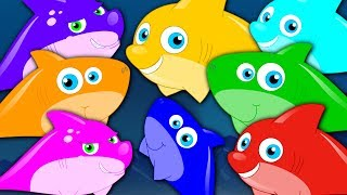 Learn Colors | Shark Colors Song | Learning Videos For Children | Cartoons For Babies by Kids Tv