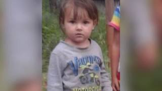 Географию поисков 3-летней Нади Пыжовой из п.Соцгородок ЕАО расширили следователи(РИА Биробиджан)