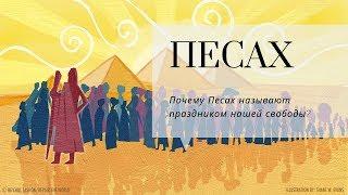 Подготовка к Песаху. Часть 2 |  Урок от директора портала Ваикра р. Яакова Шатагина