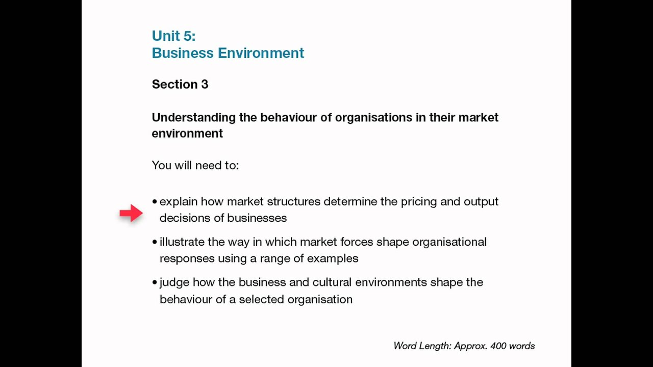 unit 1 business environment essay