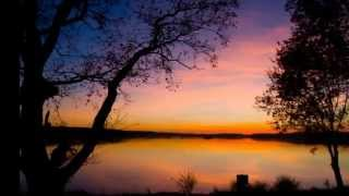 SƯƠNG LẠNH CHIỀU ĐÔNG - Phương Dung (pre 75)