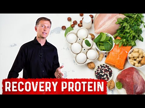 The Best Protein for Recovery from Exercise, Stress and Trauma