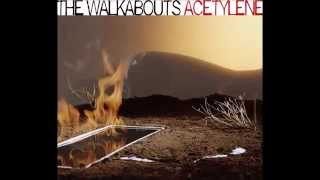 The Walkabouts-Coming up for air