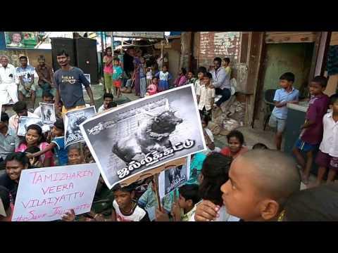 Mumbai tamilan jallikattu porattam Gondevi vakola pipe line santacruz East
