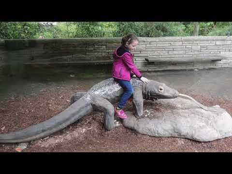 Woodland Park Zoo, Seattle, Wa. 2018