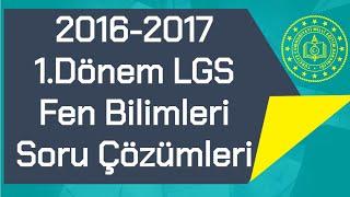 LGS 2016-2017 / 1.Dönem TEOG / Soru Çözümleri