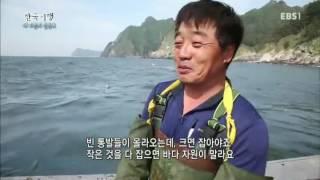 한국기행 - Korea travel_내 마음의 울릉도 3부 어부 바다를 품다_#001