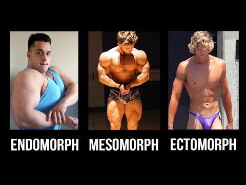 Should You Train & Diet For Your Bodytype? (Ectomorph, Endomorph, Mesomorph)