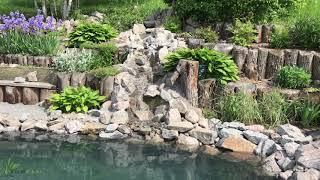 Обзор плавательного водоема для дачи с  Ромашки