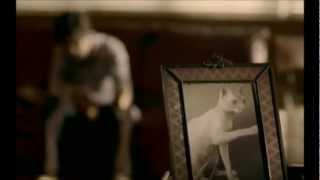 Ed Harcourt - Apple Of My Eye (Music Video) (ᴴᴰ)