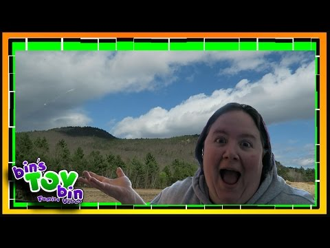 UNPLANNED TRIP TO NORTH CONWAY, NH! 4.13.2017 | Bins Toy Bin Daily Vlogs