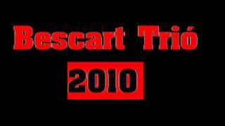 Bescart Trio 2010   Zsitheara