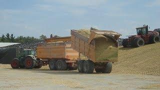 94 Kuub maïs in één keer vervoeren met Jan Veenhuis kippercombinatie Trekkerweb
