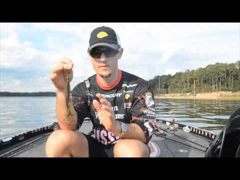 John Crews Introduces the Missle Baits Destroyer