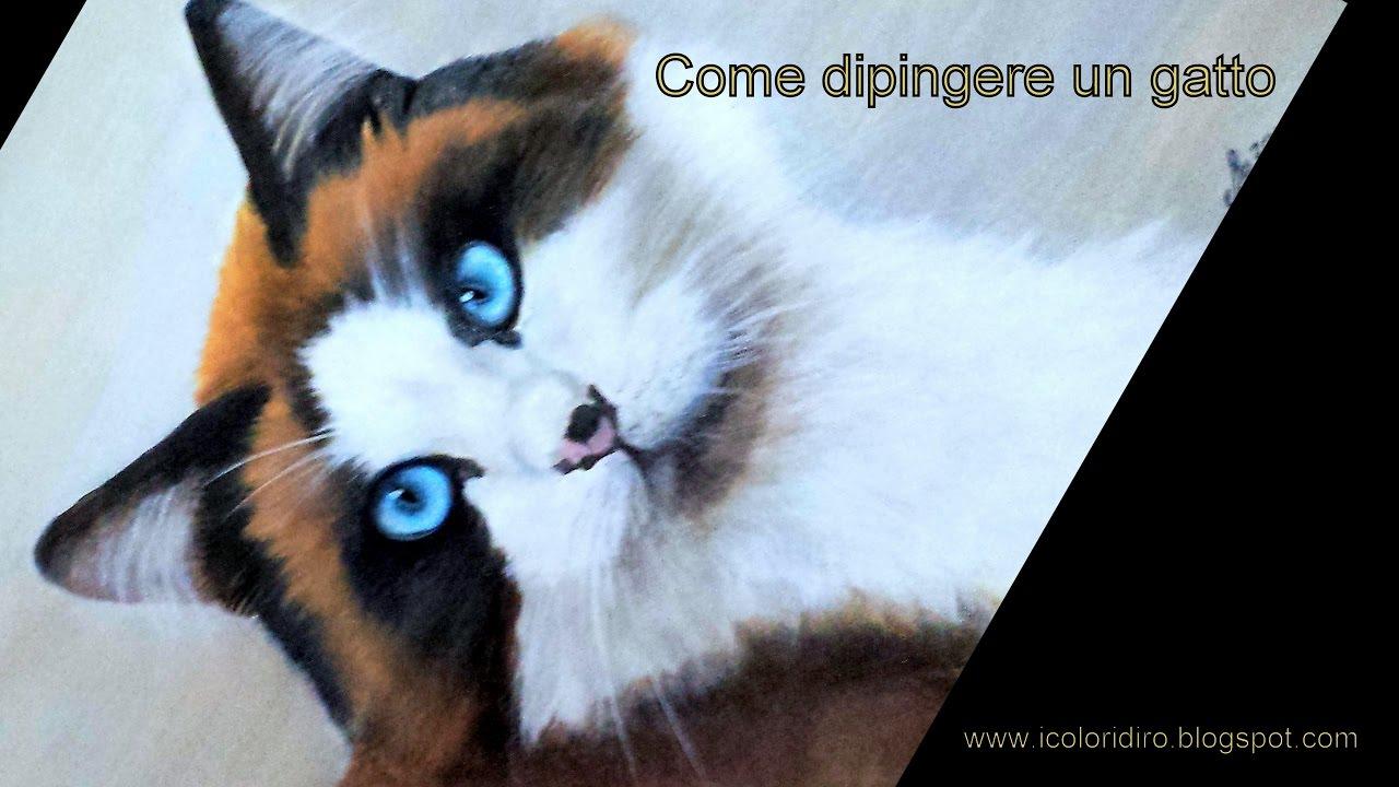 Come dipingere un gatto youtube - Olio di ruta repellente gatti ...