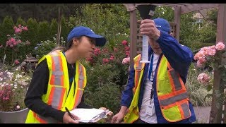City of Vancouver Irrigation Assessment