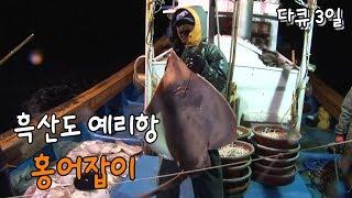 [다큐3일] 흑산도 예리항 홍어잡이 by KBS