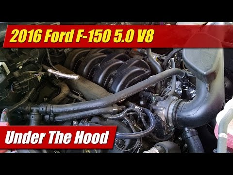 Under The Hood: 2016 Ford F-150 5.0 V8